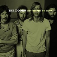 Cover The Doors - She Smells So Nice