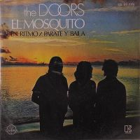 Cover The Doors - The Mosquito