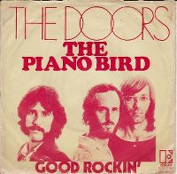 Cover The Doors - The Piano Bird