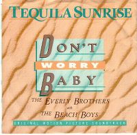 Cover The Everly Brothers with The Beach Boys - Don't Worry Baby