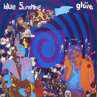 Cover The Glove - Blue Sunshine