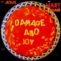 Cover The Jesus And Mary Chain - Damage And Joy