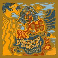 Cover The Kik - Boudewijn de Groot's Voor de overlevenden & Picknick Live