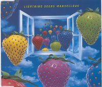 Cover The Lightning Seeds - Marvellous