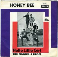 Cover The Magics & Drafi - Honey Bee
