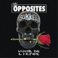 Cover The Opposites feat. Mr. Probz - Sukkel voor de liefde