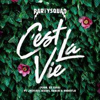 Cover The Partysquad feat. Josylvio, Bizzey, Hansie & Broertje - C'est la vie