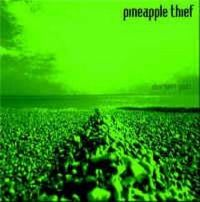 Cover The Pineapple Thief - Sherbert Gods