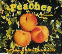 Cover The Presidents Of The United States Of America - Peaches