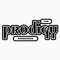 Cover The Prodigy - Experience