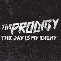 Cover The Prodigy - The Day Is My Enemy