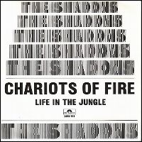 Cover The Shadows - Chariots Of Fire