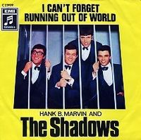 Cover The Shadows - I Can't Forget