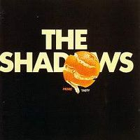 Cover The Shadows - More Tasty