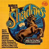Cover The Shadows - Mustang