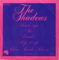 Cover The Shadows - Shadoogie