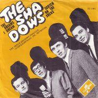 Cover The Shadows - The Dreams I Dream
