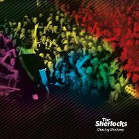 Cover The Sherlocks - Chasing Shadows