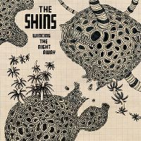 Cover The Shins - Wincing The Night Away