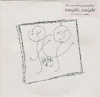 Cover The Smashing Pumpkins - Tonight, Tonight