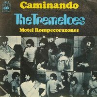 Cover The Tremeloes - By The Way