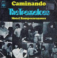 Cover The Tremeloes - Caminando
