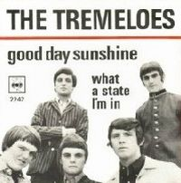 Cover The Tremeloes - Good Day Sunshine