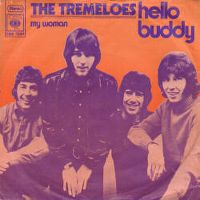 Cover The Tremeloes - Hello Buddy