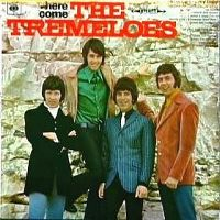 Cover The Tremeloes - Here Come The Tremeloes