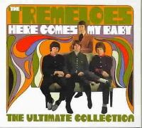 Cover The Tremeloes - Here Comes My Baby - The Ultimate Collection