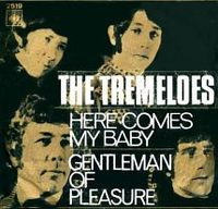 Cover The Tremeloes - Here Comes My Baby