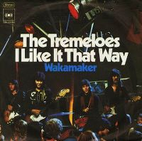 Cover The Tremeloes - I Like It That Way