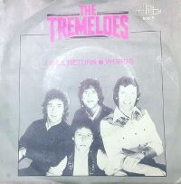 Cover The Tremeloes - I Will Return