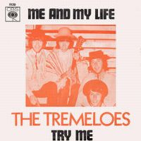 Cover The Tremeloes - Me And My Life