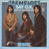 Cover The Tremeloes - Say O.K.