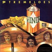 Cover The Tremeloes - Shiner