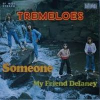 Cover The Tremeloes - Someone