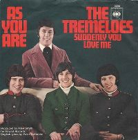 Cover The Tremeloes - Suddenly You Love Me