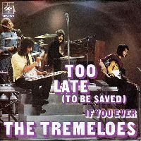 Cover The Tremeloes - Too Late (To Be Saved)