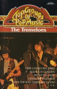 Cover The Tremeloes - Top Artists Of Pop Music