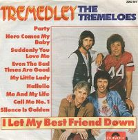Cover The Tremeloes - Tremedley