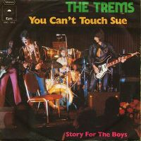 Cover The Trems - You Can't Touch Sue