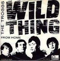 Cover The Troggs - Wild Thing