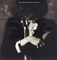 Cover The Waterboys - This Is The Sea