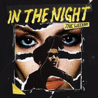 Cover The Weeknd - In The Night