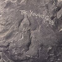 Cover The Young Gods - The Young Gods