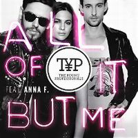Cover The Young Professionals feat. Anna F. - All Of It But Me
