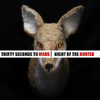 Cover Thirty Seconds To Mars - Night Of The Hunter
