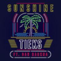 Cover TIEKS feat. Dan Harkna - Sunshine