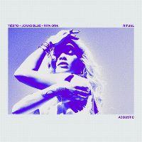 Cover Tiësto, Jonas Blue & Rita Ora - Ritual